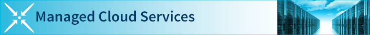 Managed Cloud Service Offering